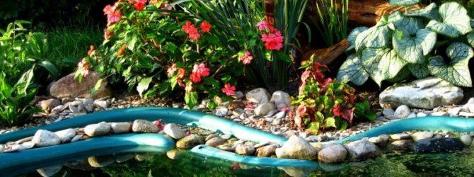 Видео 36. «Бюджетный пруд» в саду