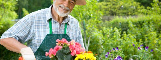 Для чего нужны услуги профессионального садовника?