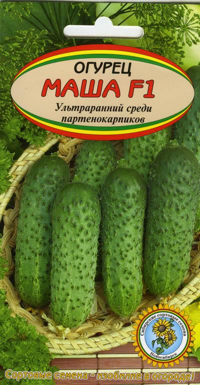 Пакетик с семенами огурцов Маша F1