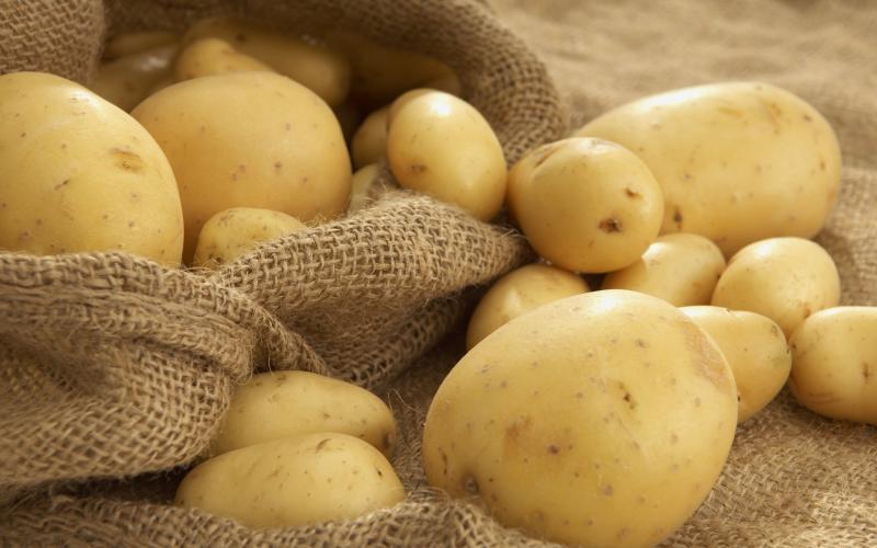Картофель Американка