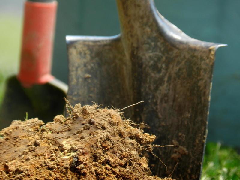 подготовка почвы для огурцов