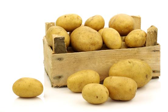 Картофель Удача после просушки