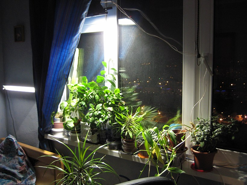 Подсветка для растений своими руками 63