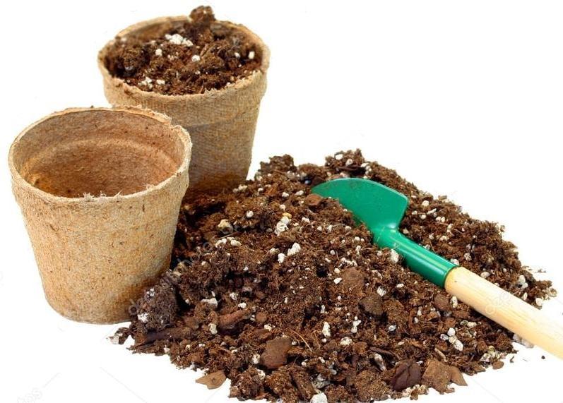 Торфяные горшочки с почвой