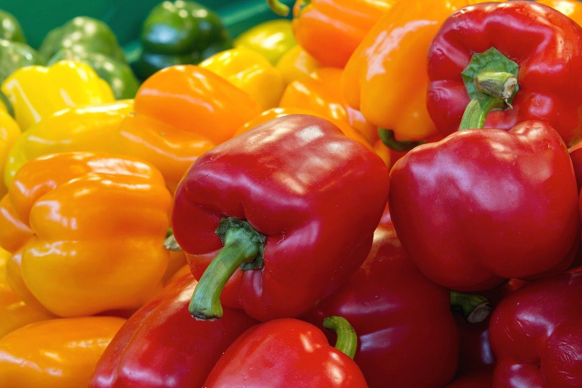 Ошибки при выращивании перцев