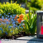 Какие цветы сажать на кладбище?