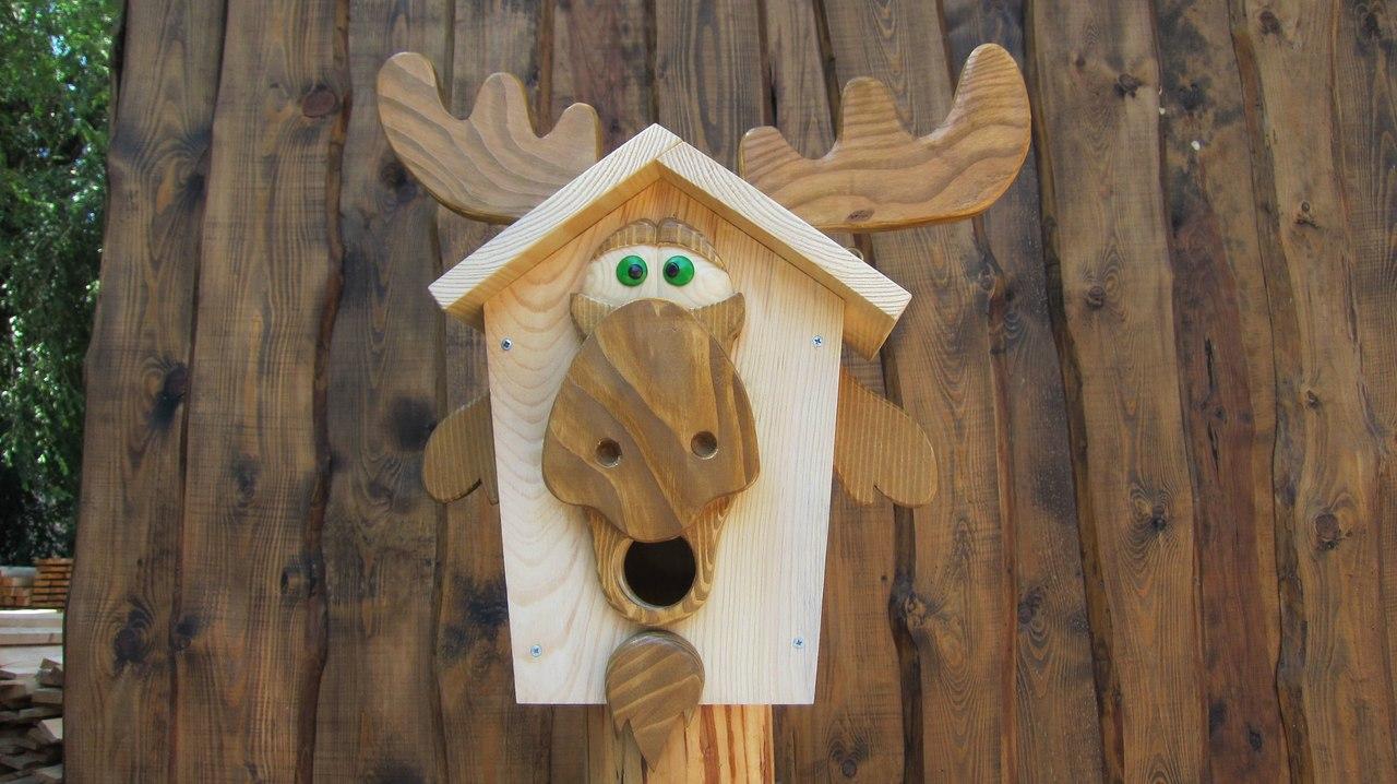 Зима – время строить птичий дом