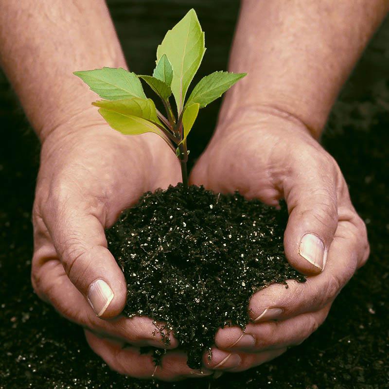 Готовим смесь для посадки растений
