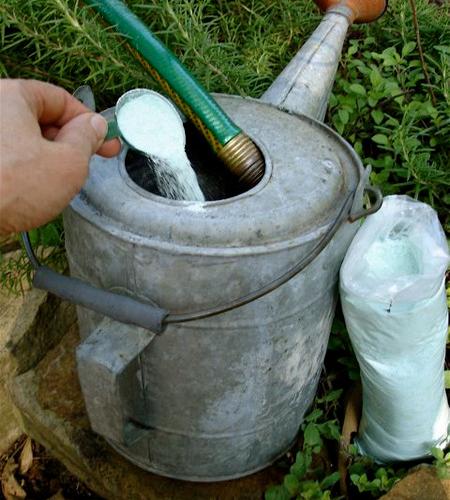 Добавка удобрения в воду перед подкормкой