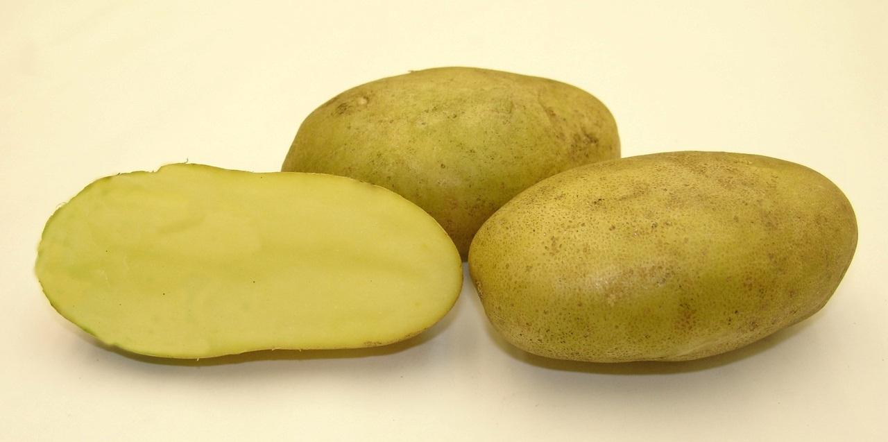 лимонка картошка