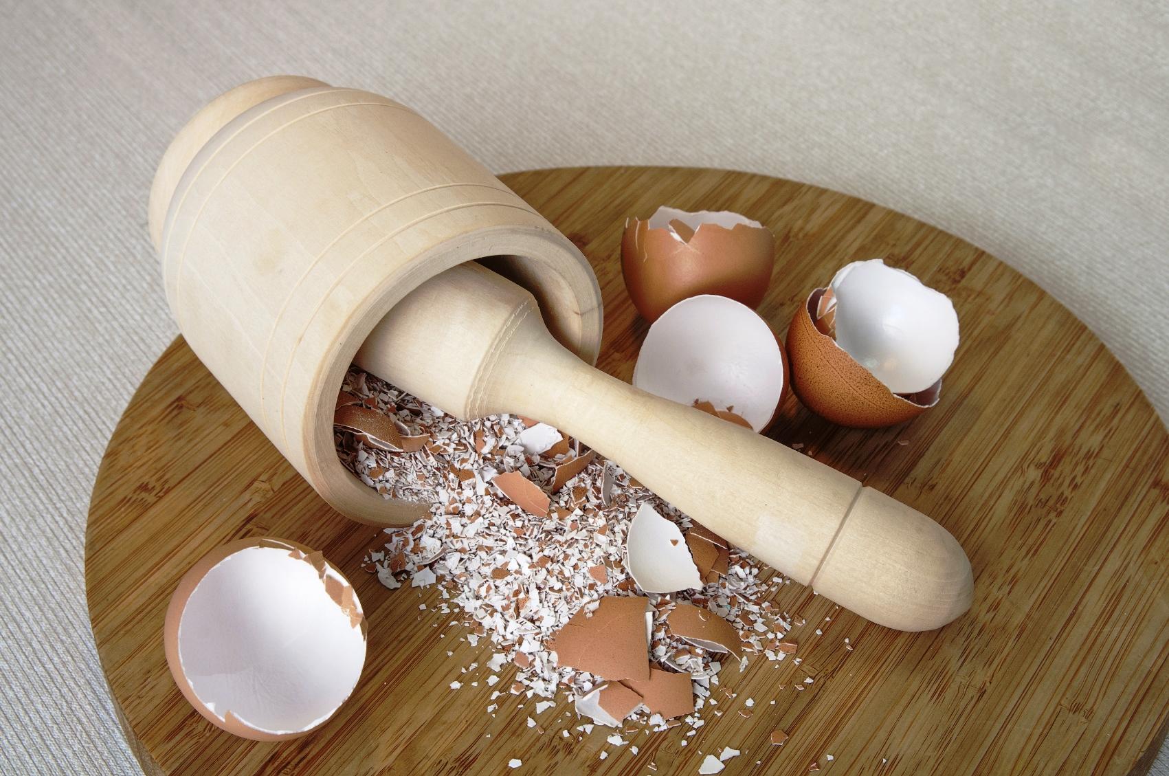 Использование яичной скорлупы как удобрения