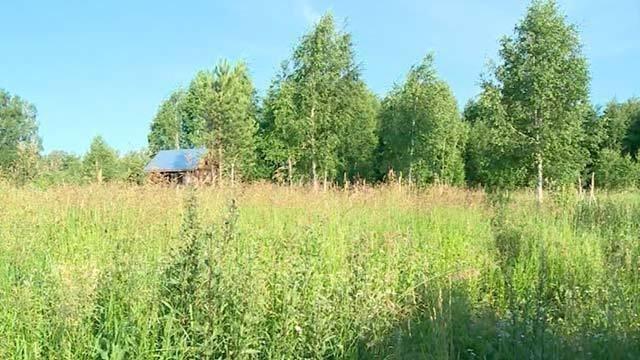 Как бесплатно получить землю под огород?