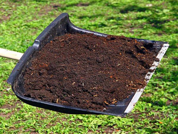 Торф как удобрение для огорода