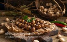 грибы в шашлыке