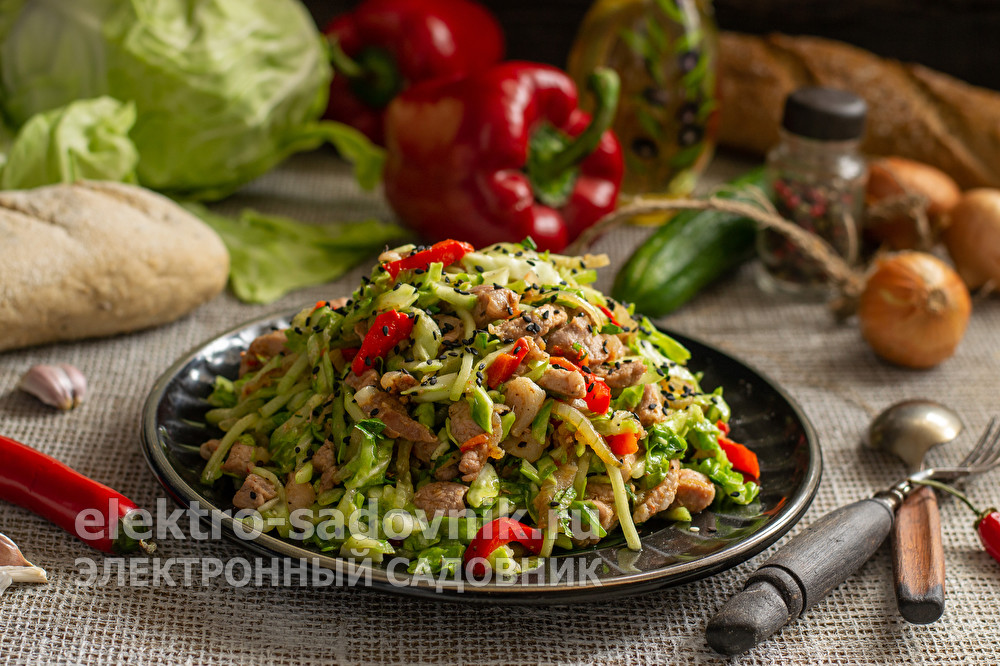 салат капуста с мясом