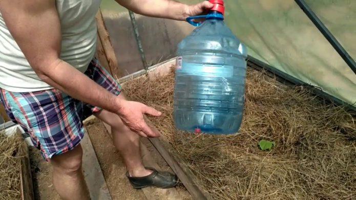 Лучшие идеи, как использовать пластиковые бутылки на даче