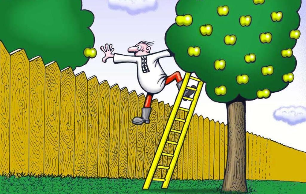 Рисунки, смешные картинки про садоводов с подписями