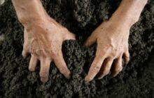 Как отмыть руки после огорода в домашних условиях народными средствами
