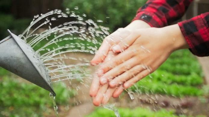 3 проверенных и 3 необычных средства, чтобы отмыть руки после огорода