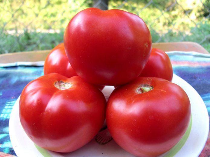 крупные красные томаты
