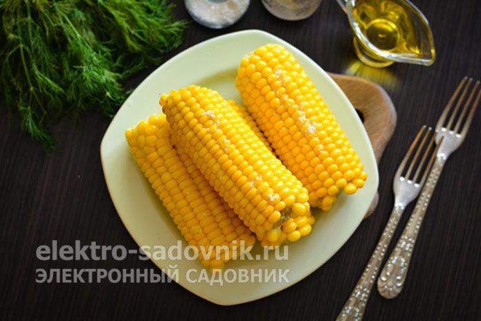 как варить кукурузу в початках в кастрюле с солью