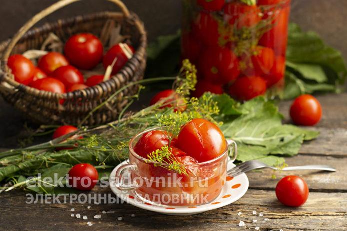 помидоры холодным способом на зиму