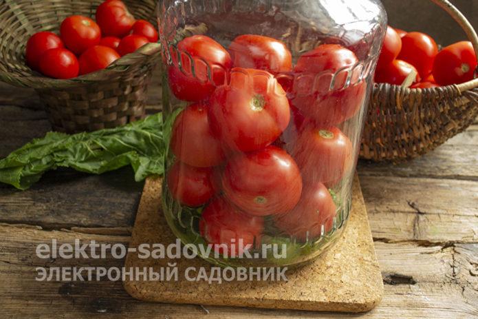 томаты уложить в банку