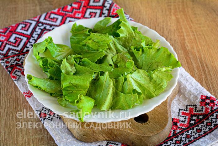 выложить листья зеленого салата