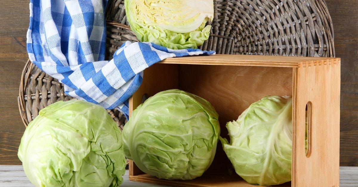 Как хранить капусту зимой до весны в свежем виде - 13 лучших способов