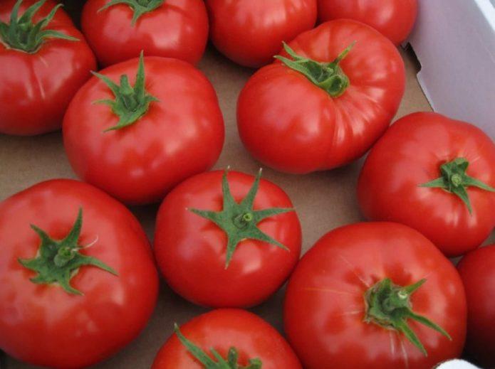 какие сорта помидор долго хранятся