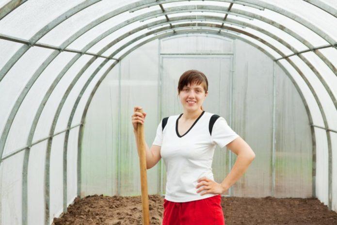 Уборка, очистка огорода и внесение удобрений: плюс 1 секретный ингредиент!