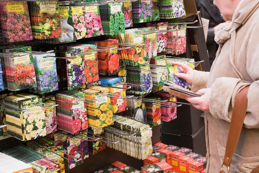 Где лучше покупать семена овощей и цветов: на рынке или в магазине