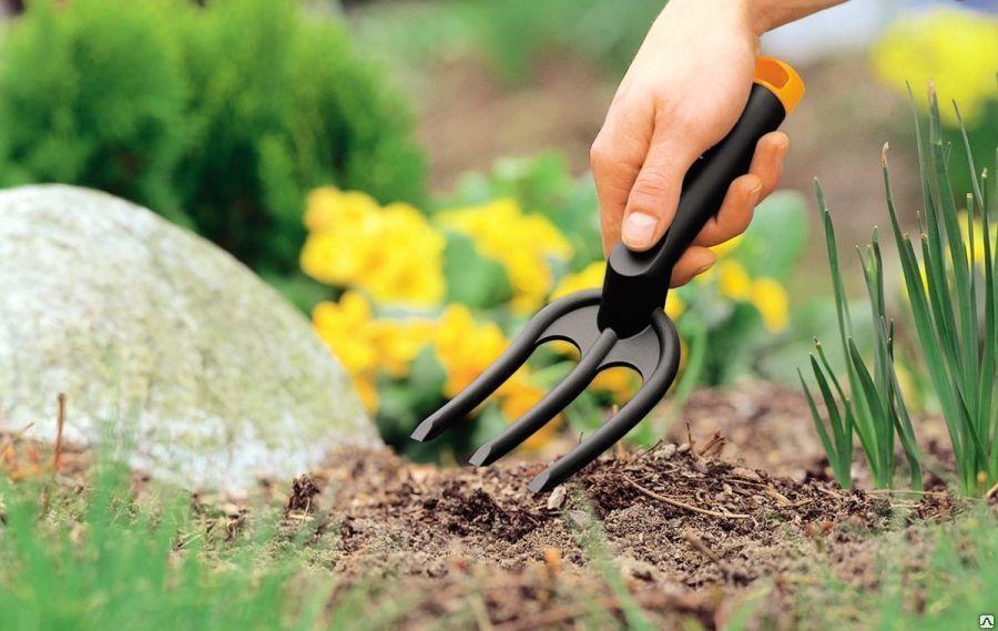 Лунный посевной календарь садовода и огородника на июнь 2020 года: таблица благоприятных дней для посева и пересадки