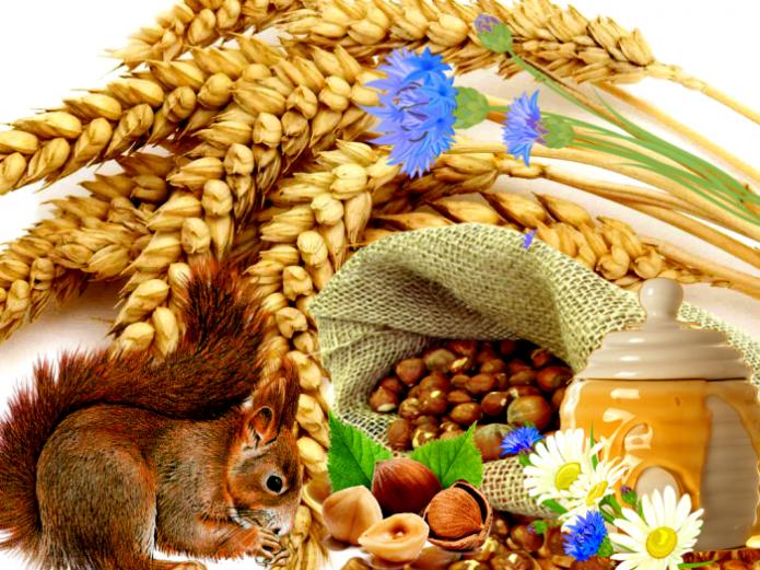 Ореховый Спас в 2021 году: даты и разрешенные работы для дачника