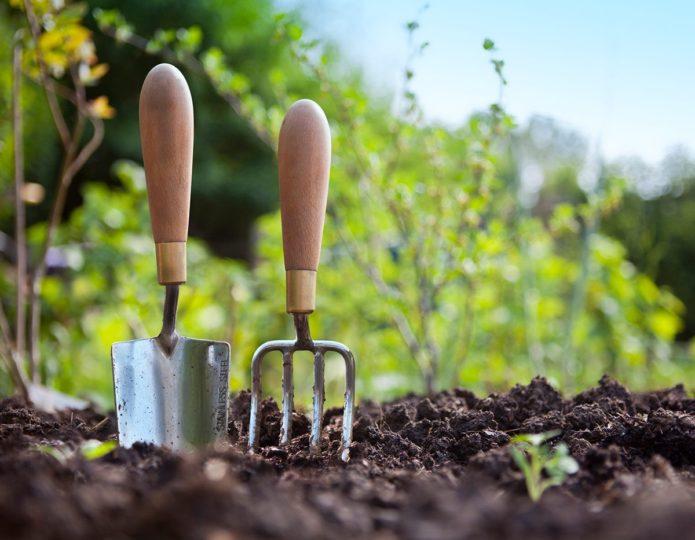 Календарь на апрель 2021 года: благоприятные дни для посева и работ в саду