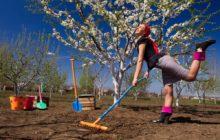 Выходные на майские праздники в 2020 году: календарь дачника, что делать в огороде и на даче в праздничные дни