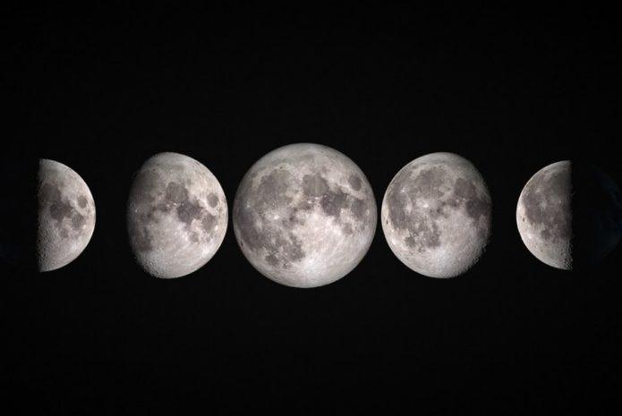 Посадочные дни августа 2021 года с учетом лунного календаря и региона выращивания