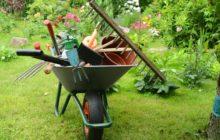 Лунный календарь садовода и огородника для Урала