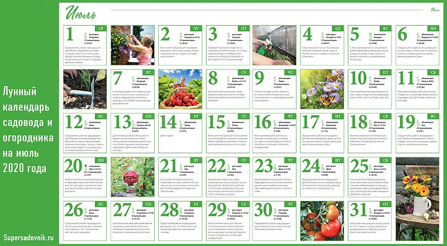 лунный календарь посадки семян на 2021 год