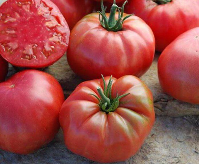 томаты сахарный бизон