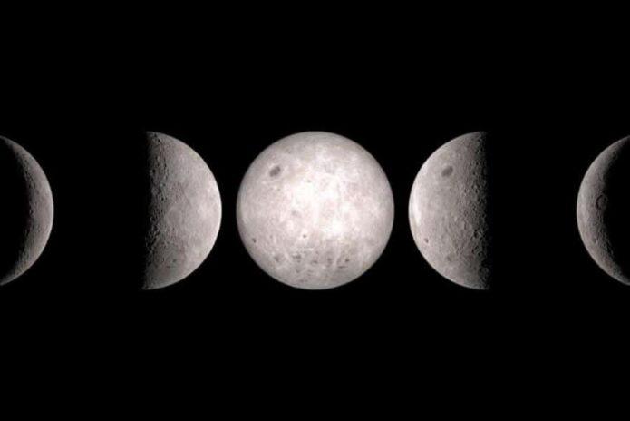 Благоприятные дни осени для посадки крыжовника в 2021 году по лунным фазам
