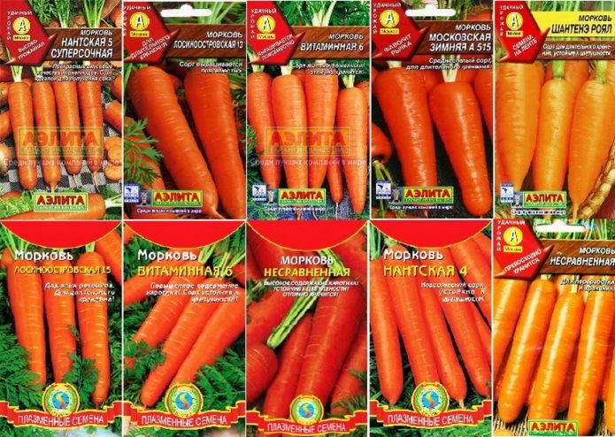 Самые благоприятные дни для посева моркови в 2021 году по лунным фазам