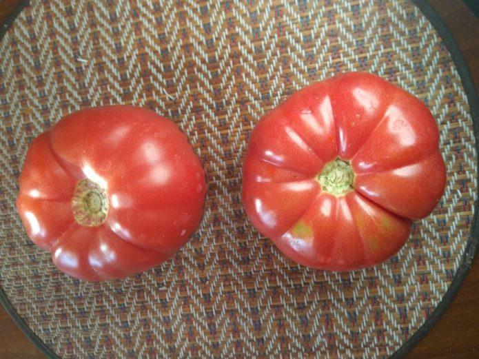 Самые интересные помидоры от коллекционеров: сорта 2020 года