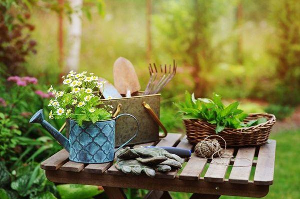 Благоприятные дни для садоводов и огородников в Ростовской области на 2021  год по фазам луны