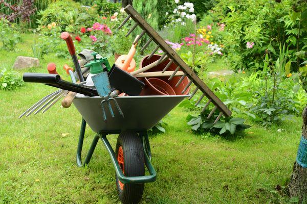 Посевной календарь для огородников Ростовской области