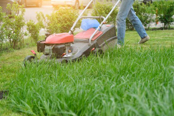 Как выбрать аккумуляторные газонокосилки для дачи или участка