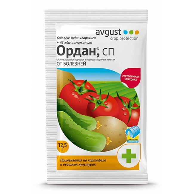 Как распознать фитофтороз на томатах и способы борьбы с заболеванием